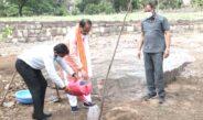 मुख्यमंत्री श्री चौहान ने स्मार्ट उद्यान में नीम का पौधा रोपा